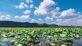 Video : China : Beautiful HangZhou 杭州 and West Lake 西湖