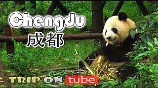 Video : China : ChengDu 成都 !