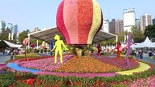 The Hong Kong Flower Show 香港花卉展