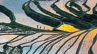 The YuanYang rice terraces 哈尼奇迹 and DongChuan Grand Red Land 红土大观