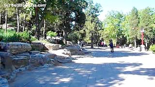 JingShan Park 景山公园, central BeiJing 北京