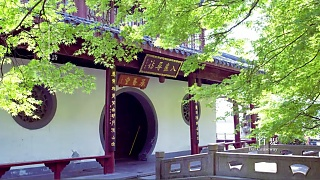 The beauty of HangZhou 杭州 …