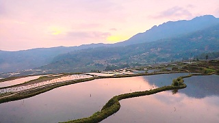The beautiful YuanYang  元阳 rice terraces, south YunNan province